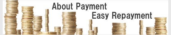About Payment Easy Repayment